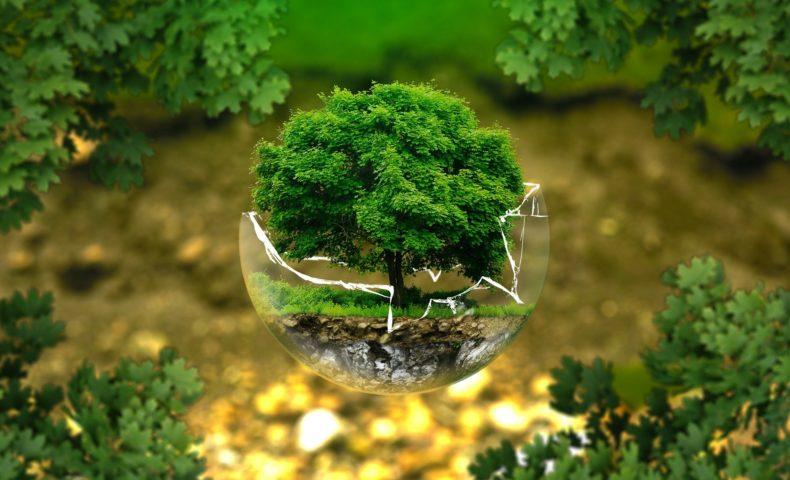 environmental-protection- ejaugsburg, Pixabay